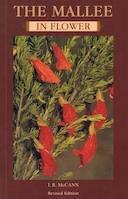 mallee-in-flower