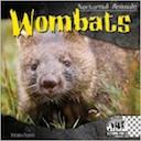 wombats-petrie